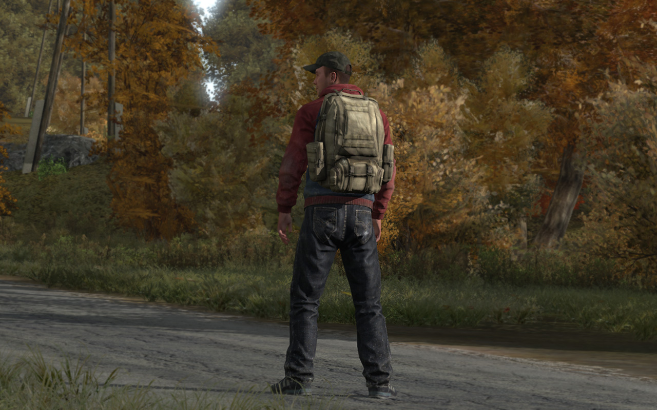 Quelle: http://survival-legends.de/wp-content/uploads/2013/12/dayzstandalone.jpg